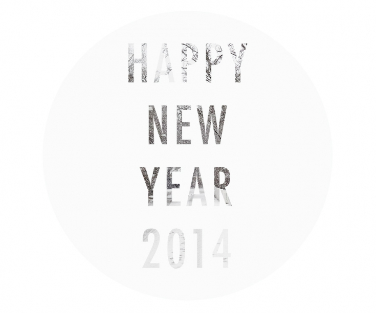 happy-new-year-2014-krista-keltanen-01